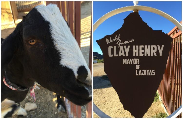 Meet Clay Henry, the Major of Lajitas in Big Bend National Park on EveryRoadAStory