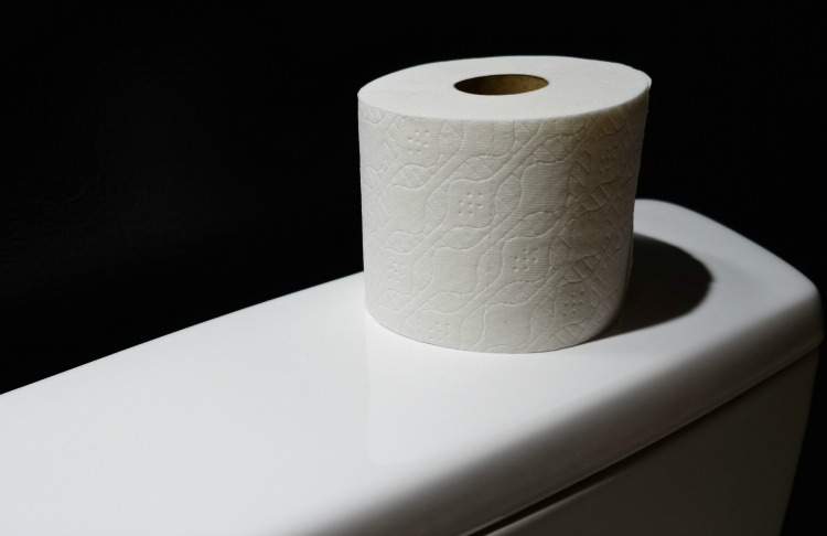 Toilet paper holder review on EveryRoadAStory.com